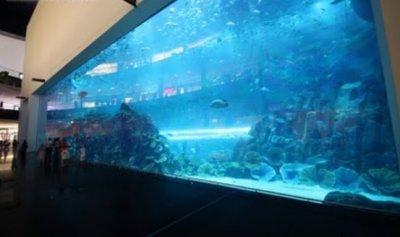 Самые большие аквариумы (океанариумы) мира